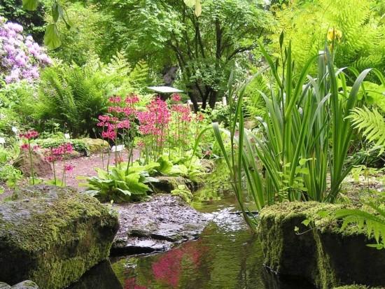 Jubiläumsfeier des Botanischen Gartens fällt ins Wasser